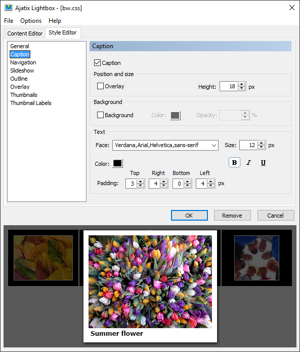 Click to view Lightbox Expression Web Add-In 1.3.3 screenshot